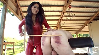 Clubdom - Jade Tiger Loves To Cane