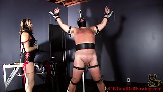 CBT & Ballbusting - Helpless and Beaten